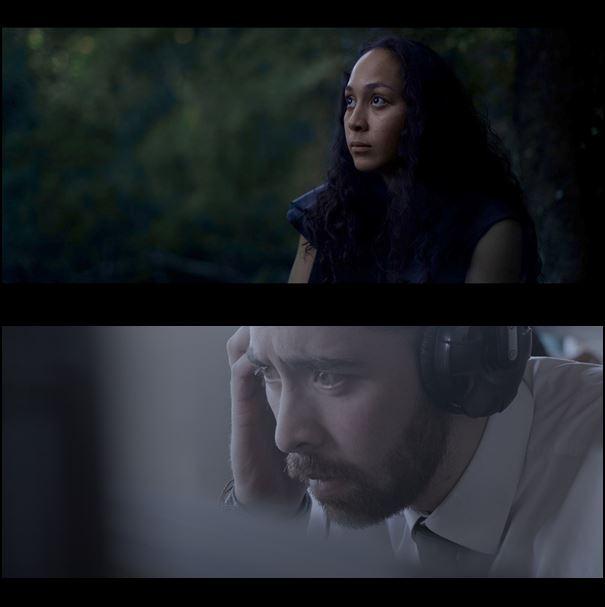Screen stills from 'Wild' and 'Hark'