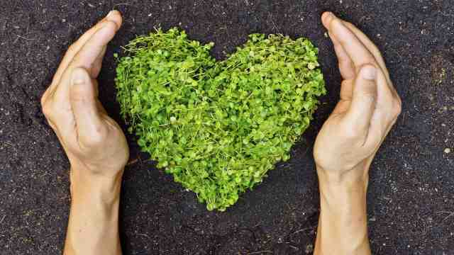 A pair of hands mimic the shape of a love heart constructed from greenery.