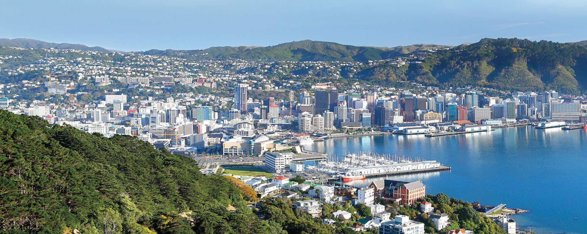 Aerial view over Wellington with harbour and downtown.