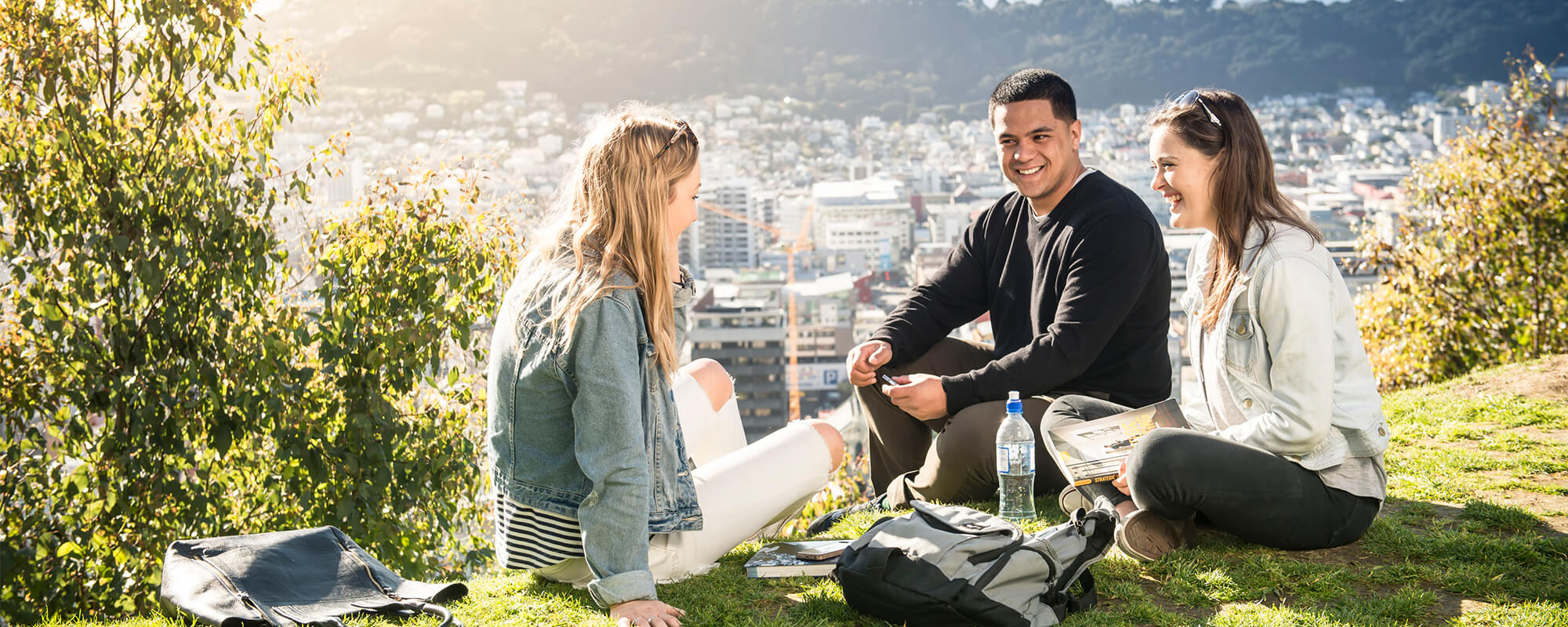 undergraduate degrees victoria university of wellington school s