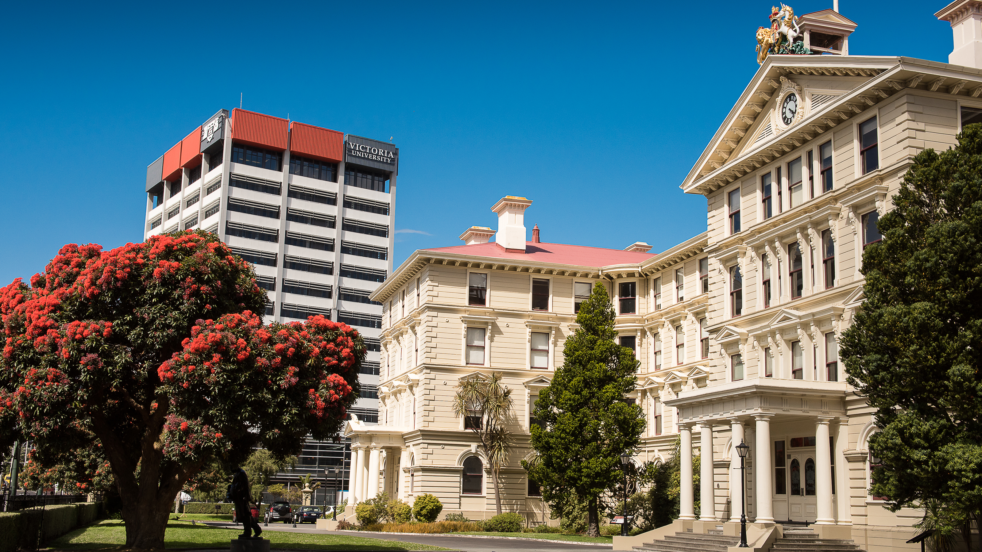 Old Government Buildings on a clear summer's day, with Rutherford House behind and the flame gum tree in full bloom
