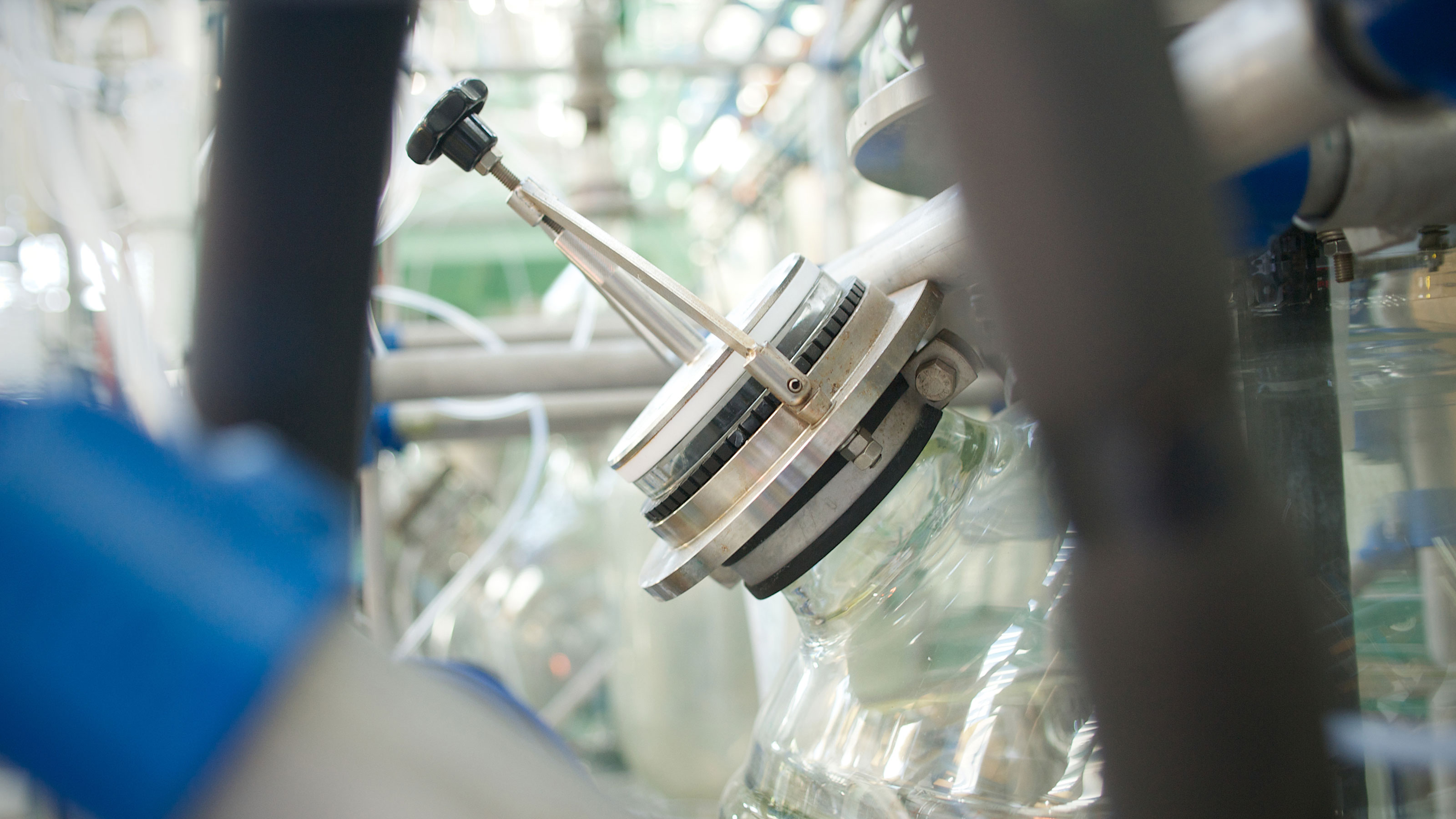 Photograph of carbohydrates being synthesised