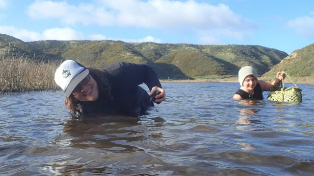 Amber McEwan and a volunteer collecting kākahi