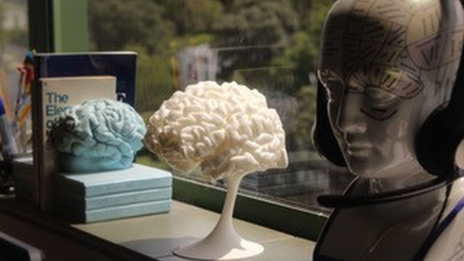 model of a brain sitting on a window ledge