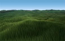 Renderman grass - Byron Mallett