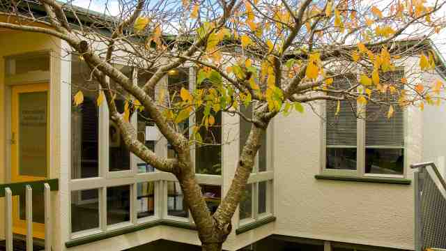 Victoria's International Institute of Modern Letters at Kelburn campus during autumn