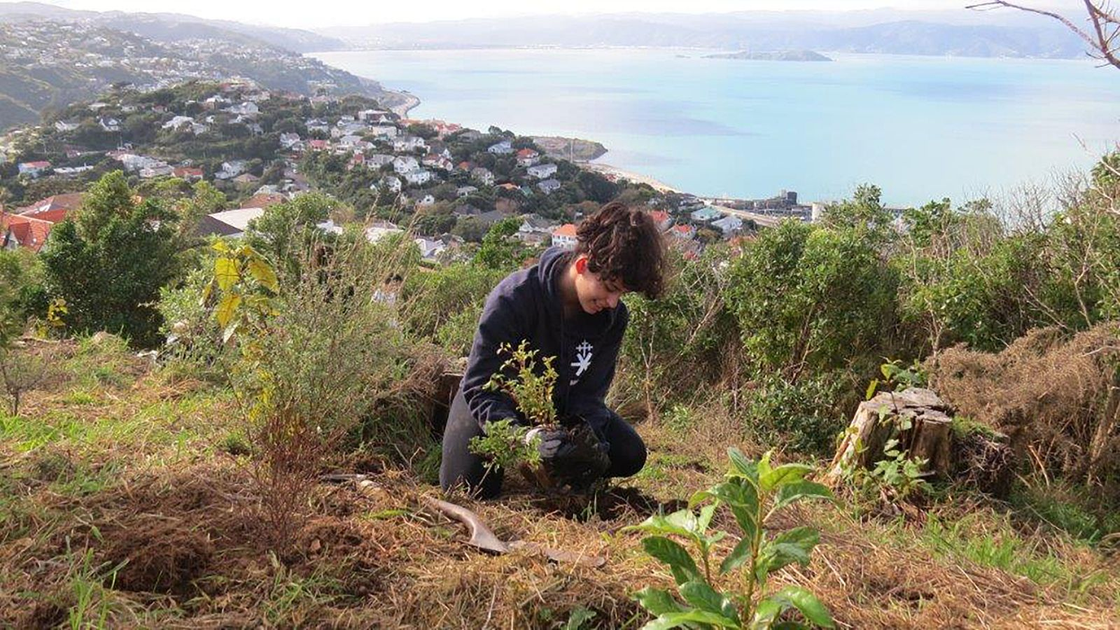 Student works on conservation area in Wellington