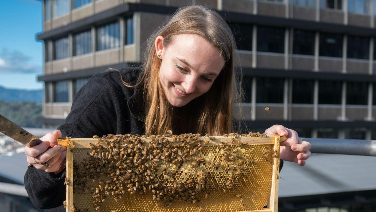 Jessica Russell holds part of bee hive on top of Old Kirk building