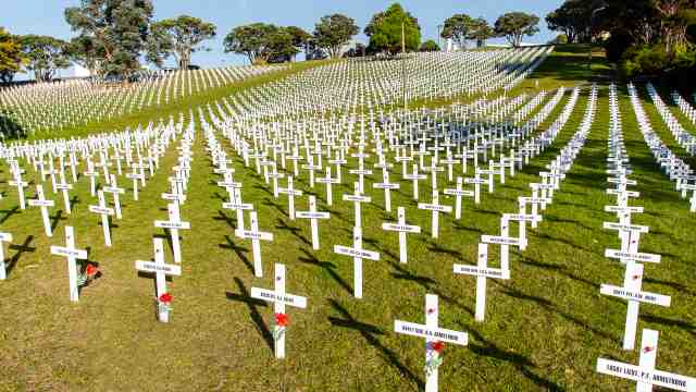Fields of Remembrance installation featuring thousands of white crosses in Wellington Botanic Garden