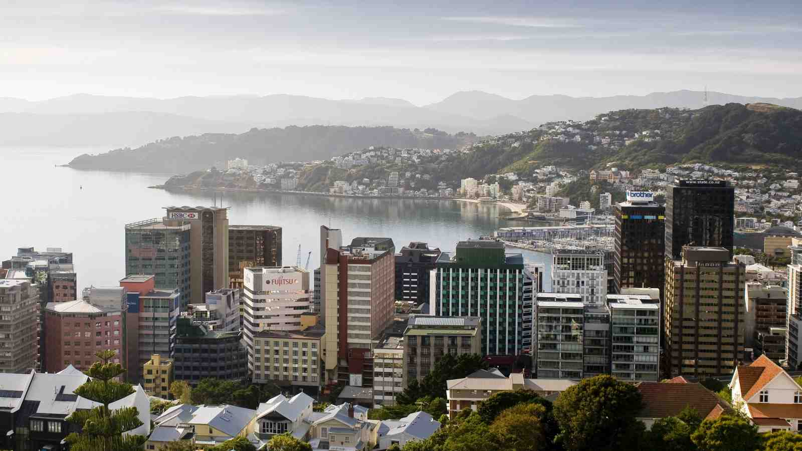 Improved Global Rankings A Win For Wellington And New Zealand