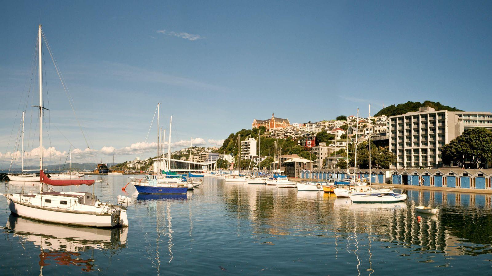 Wellington Harbour Oriental Bay